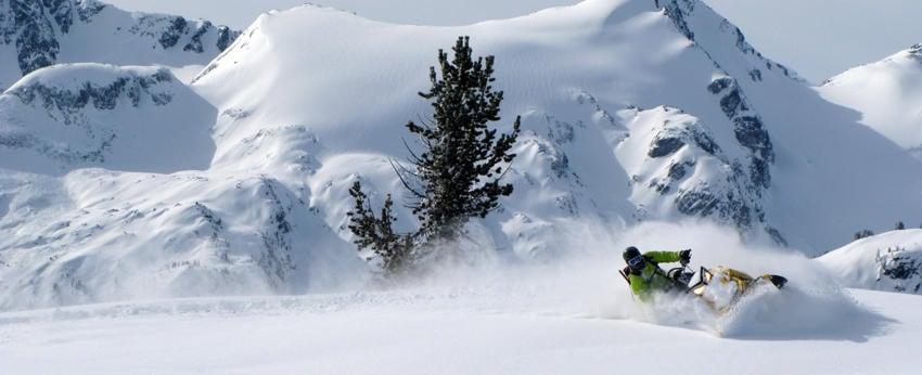 Pemberton Snowmobiling