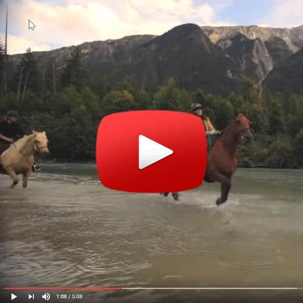 Pemberton Video